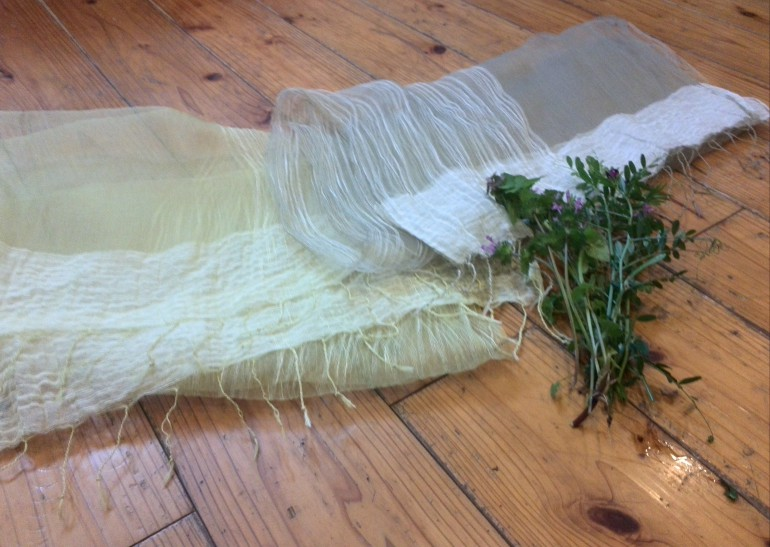 前田氏のストールです。仏の座・カラスノエンドウ・おどりこ草で染めました。